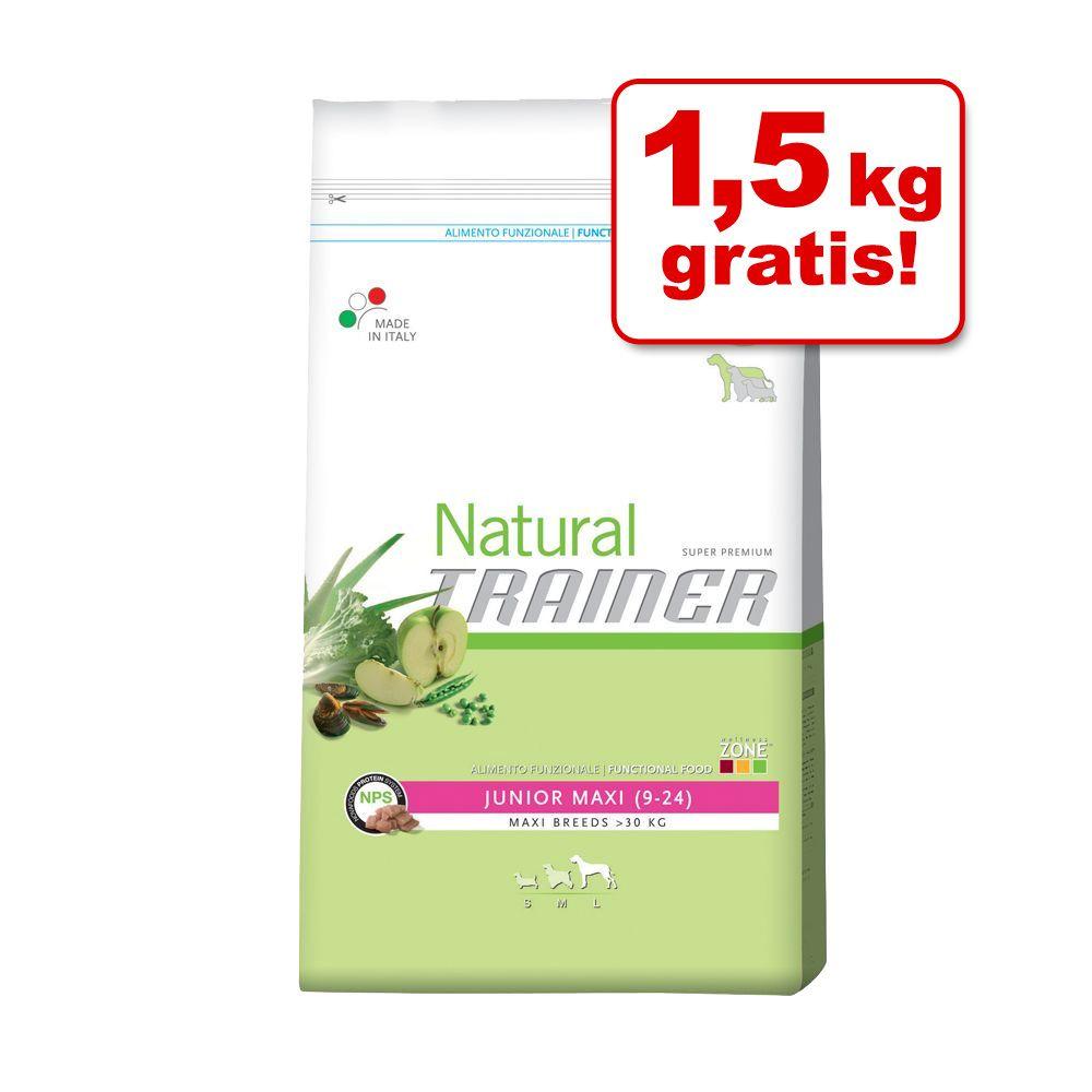11 + 1,5 kg gratis! Trainer Natural Medium / Maxi, 12,5 kg - Maxi, wołowina ryż i żeń-szeń