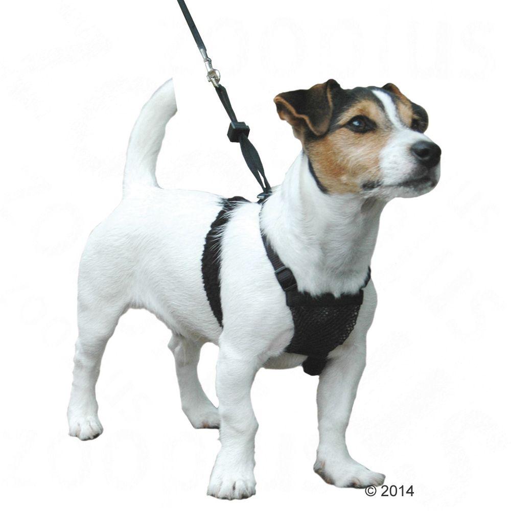 Szelki miękkie dla psa NON-PULL - Rozm. M