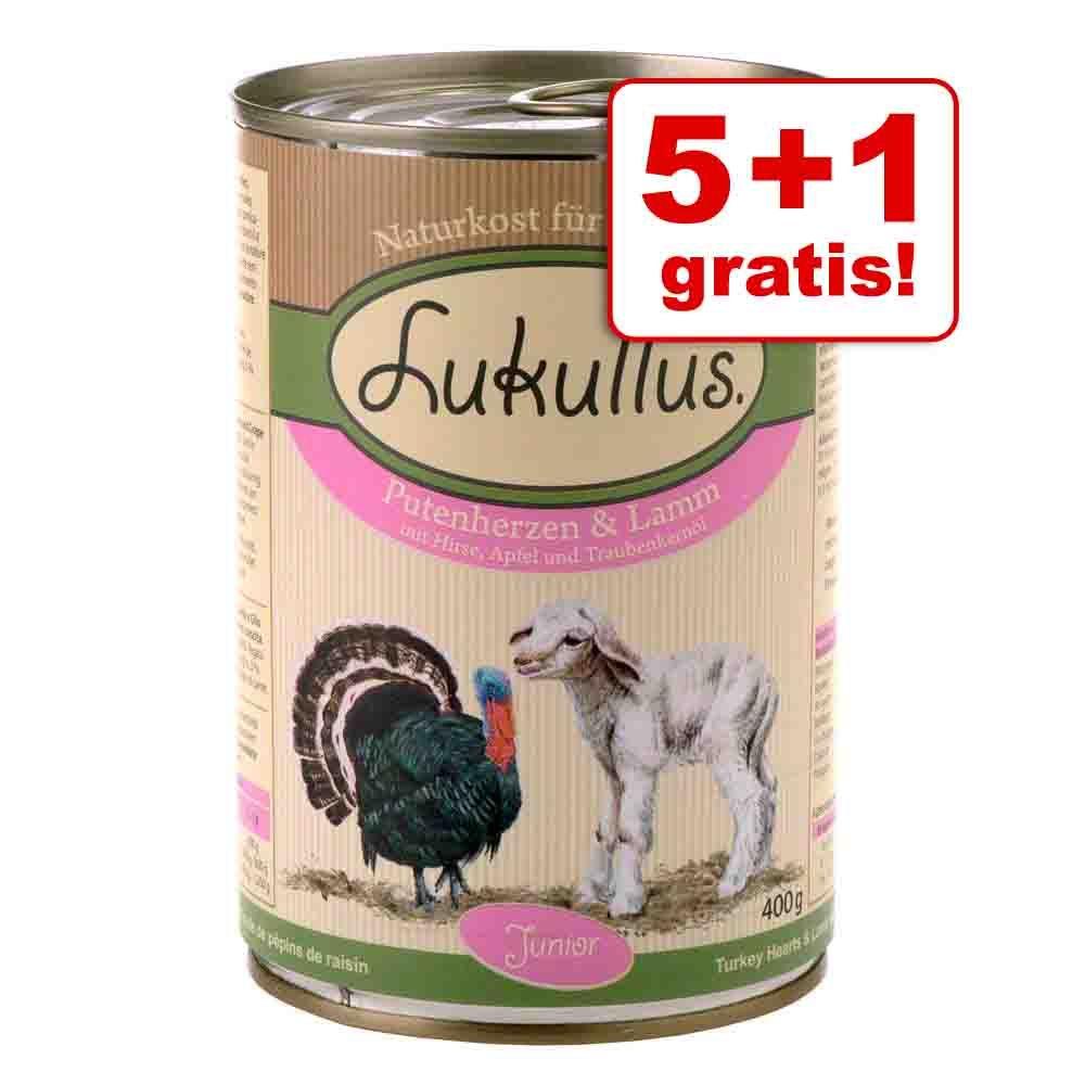 5 + 1 gratis! Lukullus Junior, 6 x 400 g - Kurczak z cielęciną