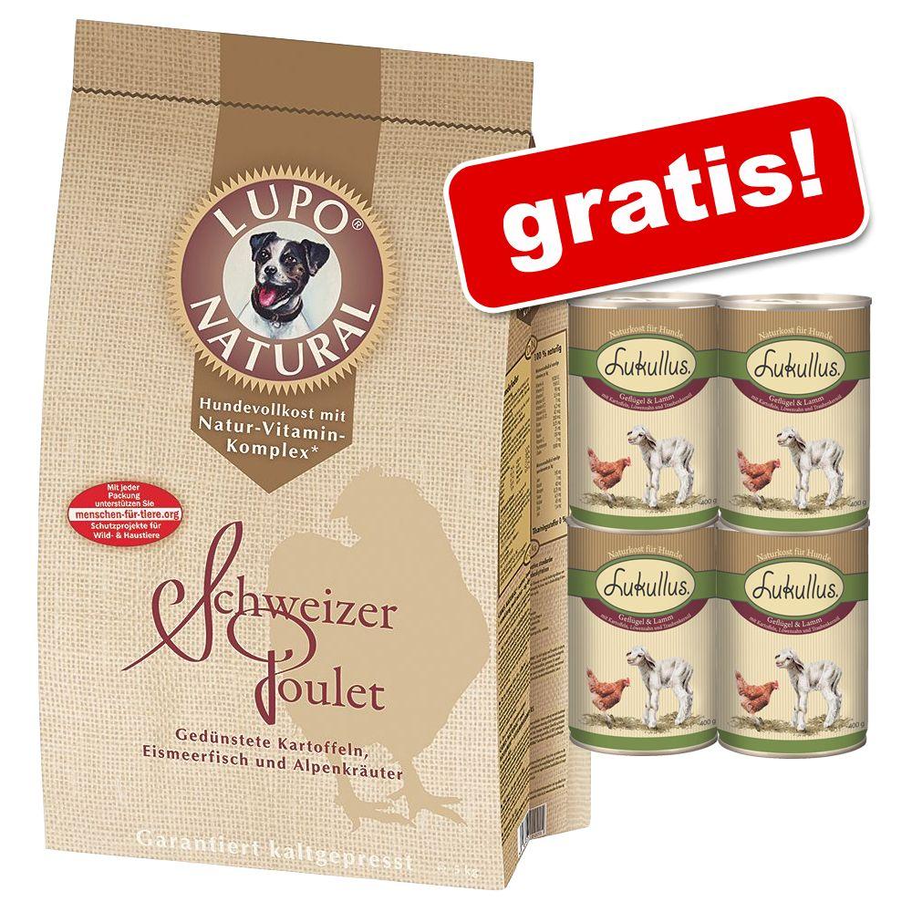 Foto 15 kg Lupo Natural Polletto Svizzero + 4 x 400 g Lukullus gratis! - 15 kg