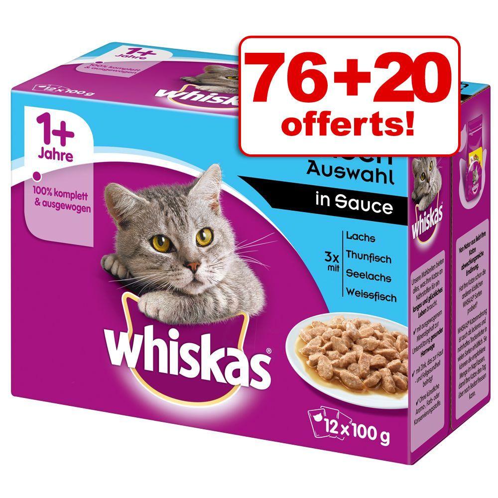 Chat Boîtes et sachets Whiskas