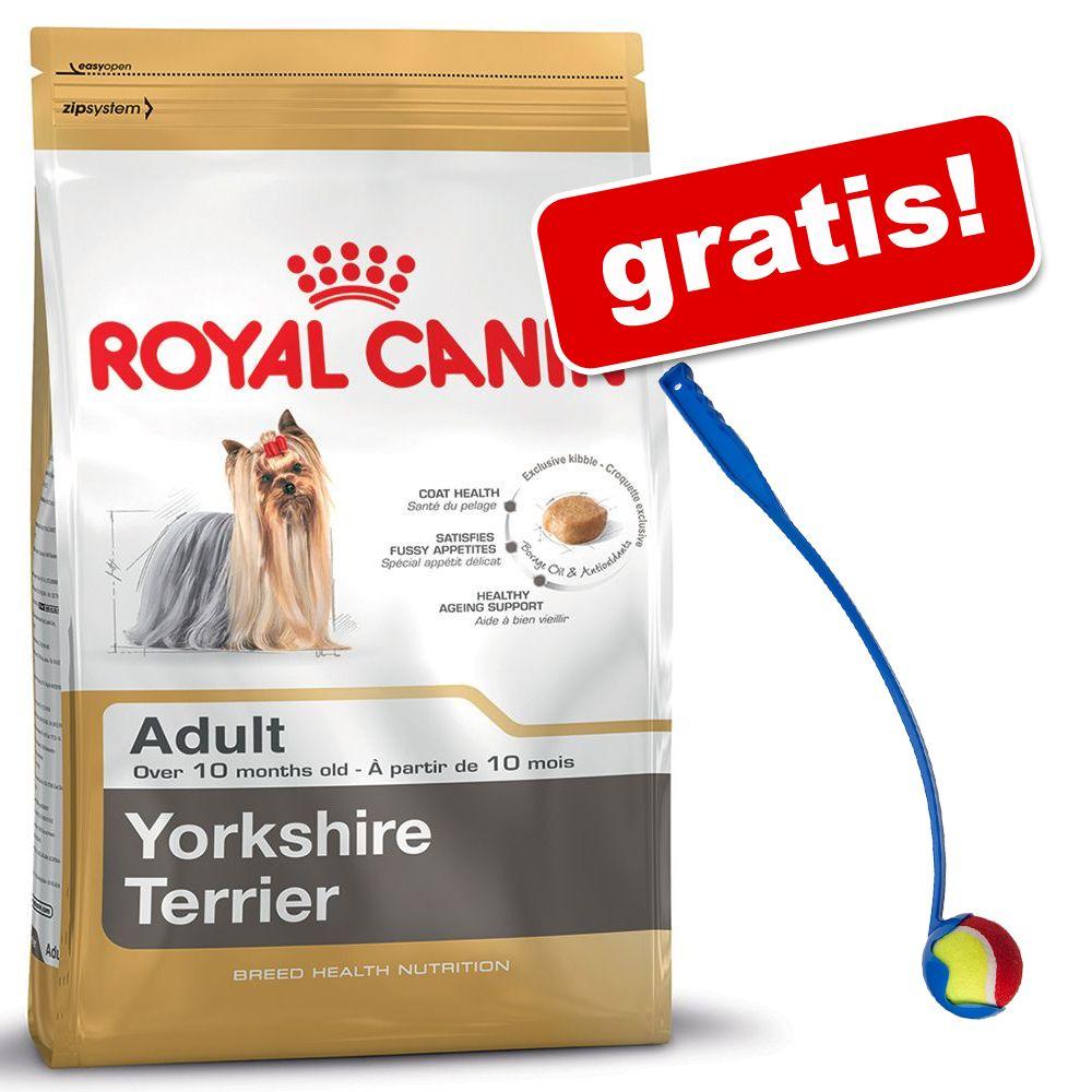Duże opakowanie Royal Canin Breed + Wyrzutnia piłki dla psa gratis! - Poodle Adult, 2 x 7,5 kg