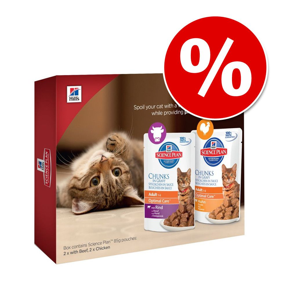 Pakiet próbny Hill's Feline Adult Sterilised, 4 x 85 g w super cenie! - Adult, wołowina i kurczak