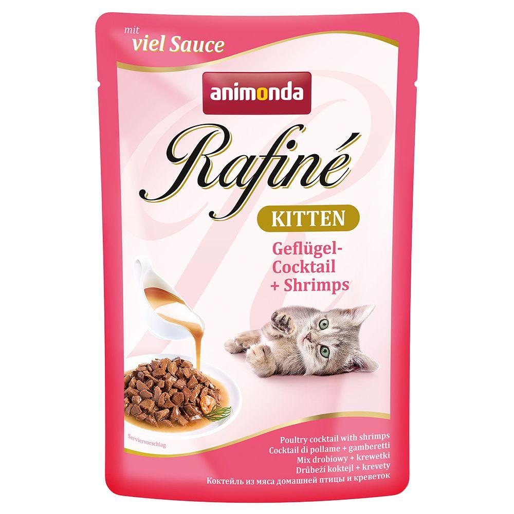 Animonda Rafiné Kitten, 12 x 100 g - Koktajl drobiowy i krewetki