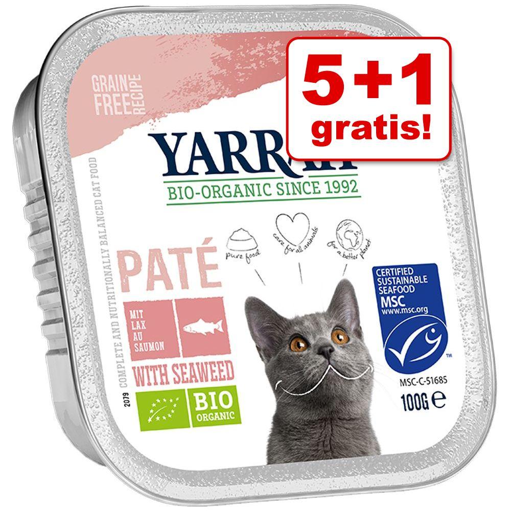 5 + 1 på köpet! 6 x 100 g Yarrah Organic Paté / Chunks - Paté Lax med alger