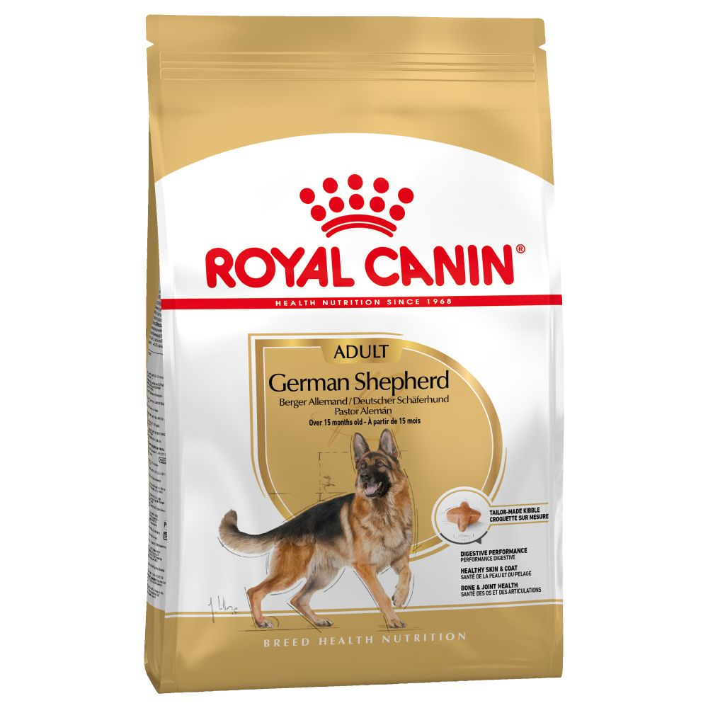 German Shepherd Royal Canin Adult Dry Dog Food