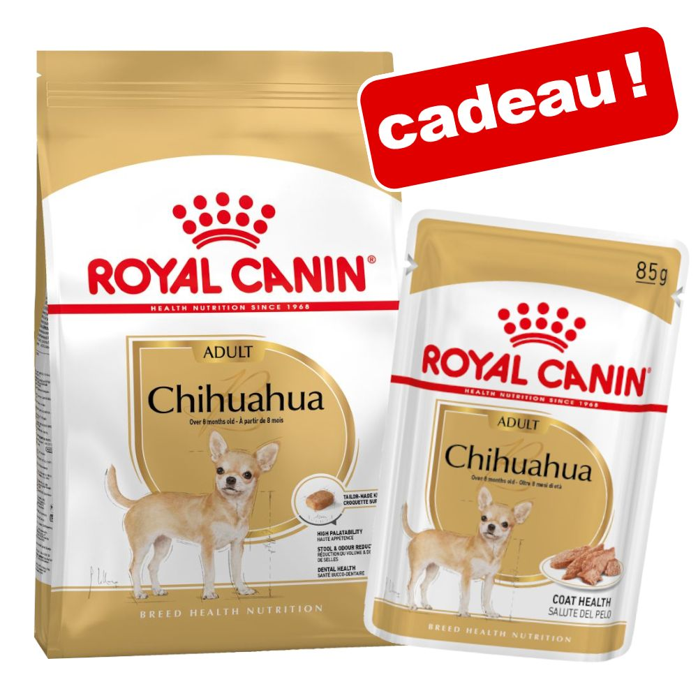 3kg Chihuahua Adult Royal Canin Breed croquettes pour chien + 12x85g Chihuahua Royal Canin Nourriture humide pour chien
