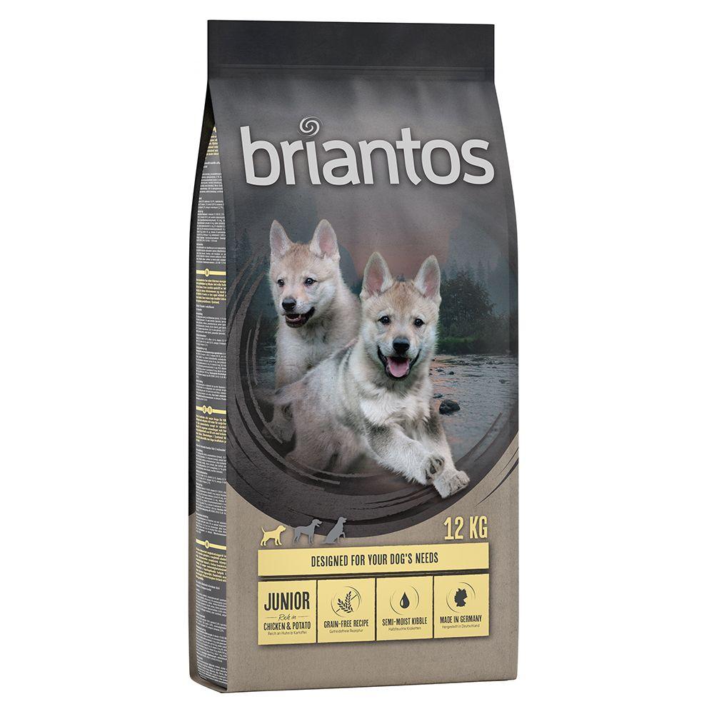 Briantos Junior poulet, pommes de terre - SANS CÉRÉALES pour chien - 4 x 1 kg