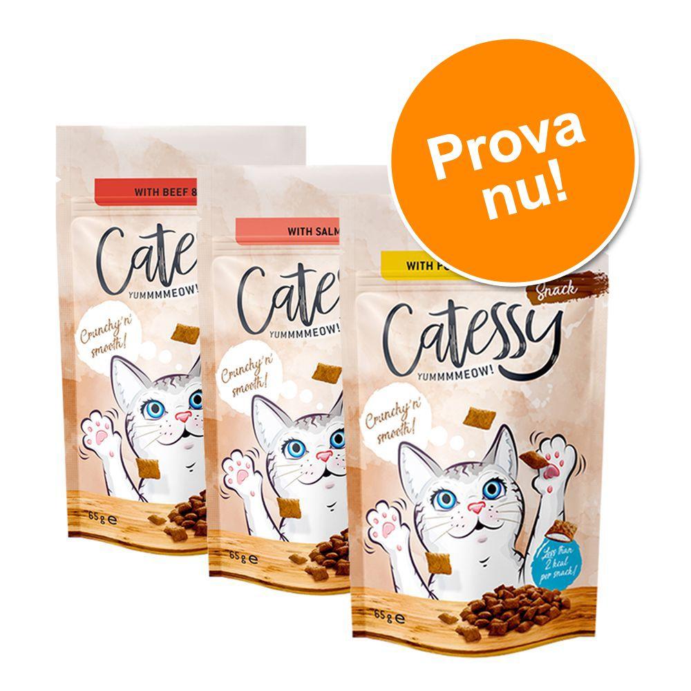 Blandat provpack Catessy Snacks 3 x 65 g 3 olika sorter