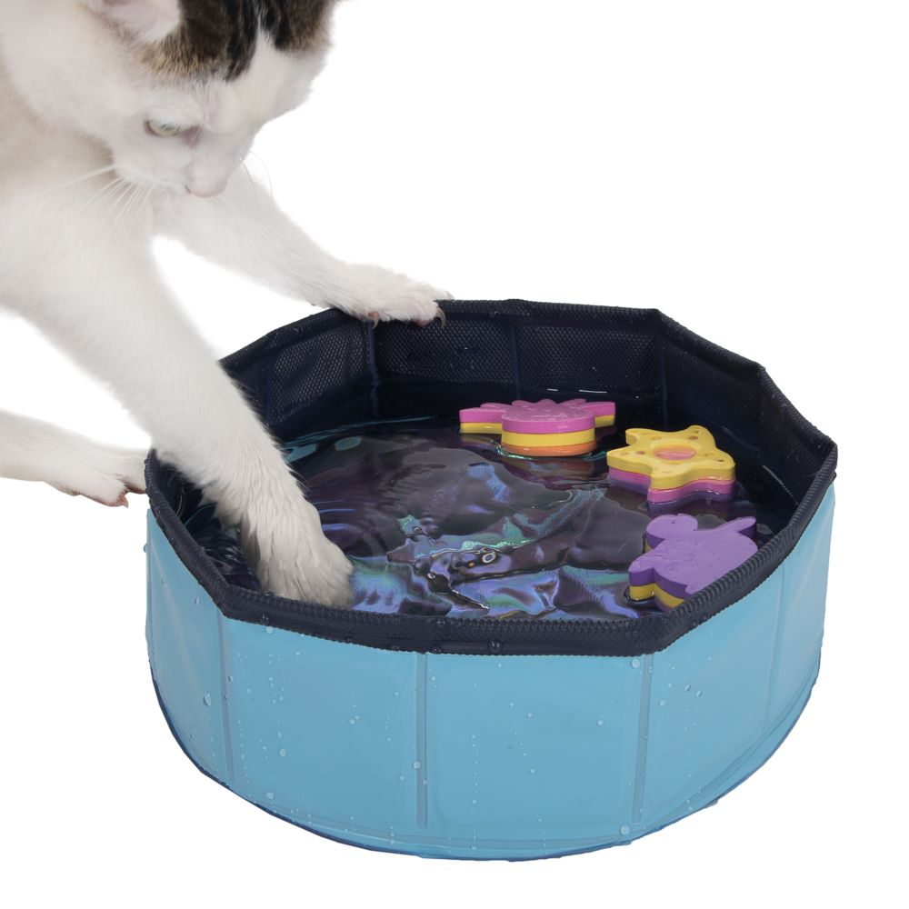 Gioco per gatti Kitty Pool blu blu