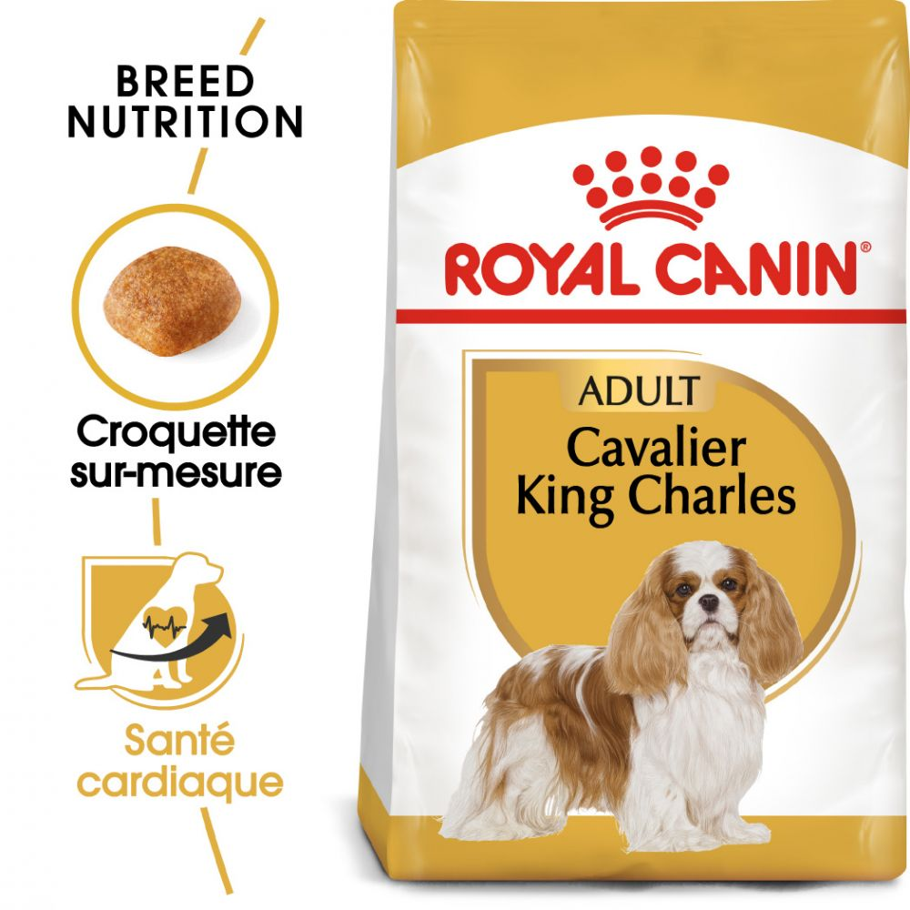3kg Adult Cavalier King Charles Royal Canin Breed - Croquettes pour chien