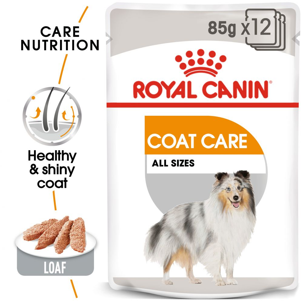 24x85g Coat Care Wet Care Nutrition Royal Canin Wet Dog Food