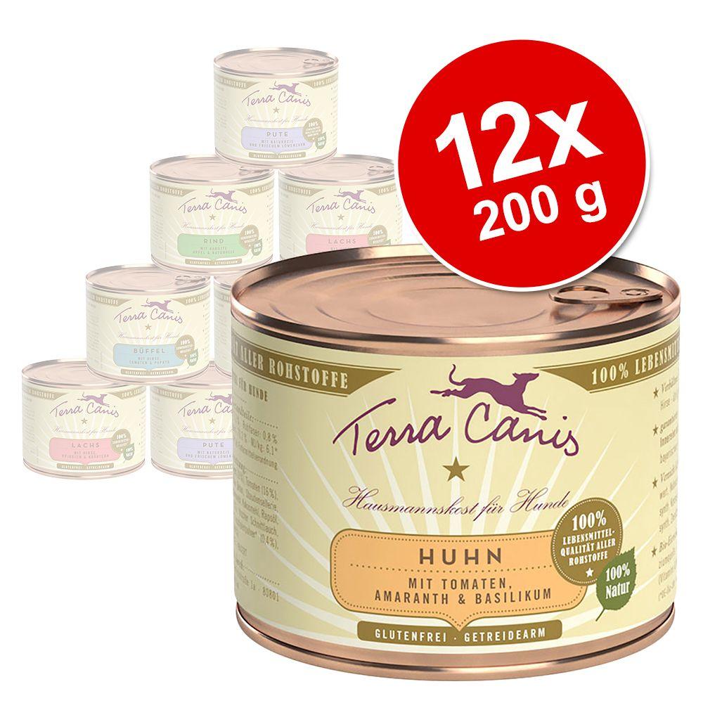 Sparpaket Terra Canis 12 x 200 g - Pute Gemüse