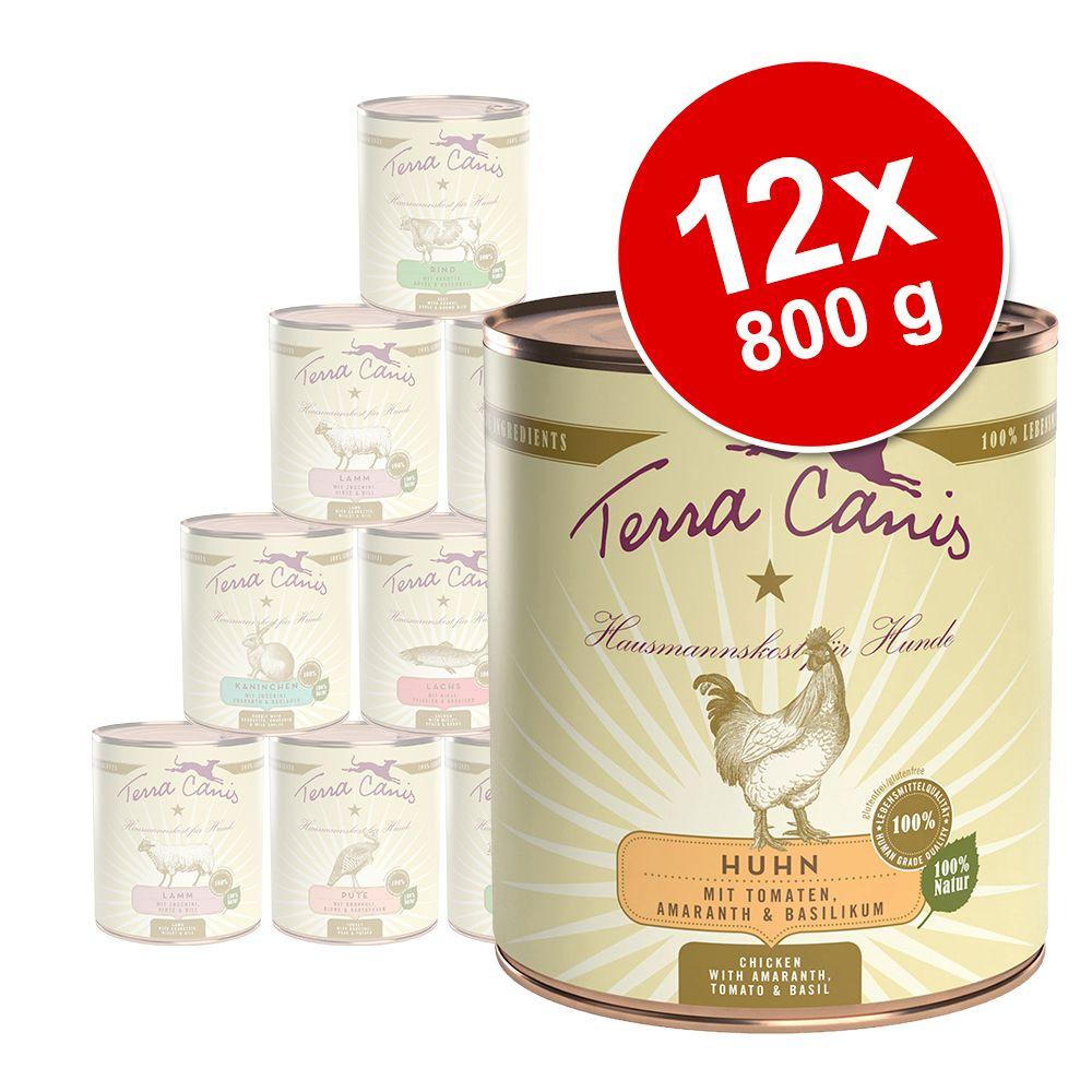 Ekonomipack: Terra Canis 12 x 800 g - Kanin med zucchini, amarant & ramslök