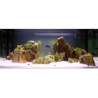 Pale Pagoda Rock, Canyon-style - Aquarium Decoration - 60 cm Set: 9 natural rocks, approx. 6 kg