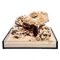 Dead Reef Rock Set - 300 Litre Set: 13 natural rocks, approx. 16 kg