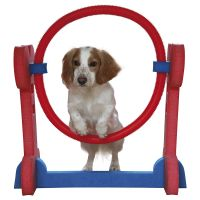 Rosewood Small Dog Agility Hoop - 70 x 32 x 68 cm (L x W x H)