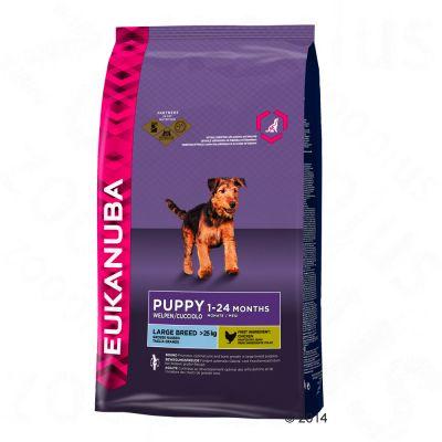 eukanuba-puppy-large-breed-hondenvoer-12-kg-3-kg-gratis