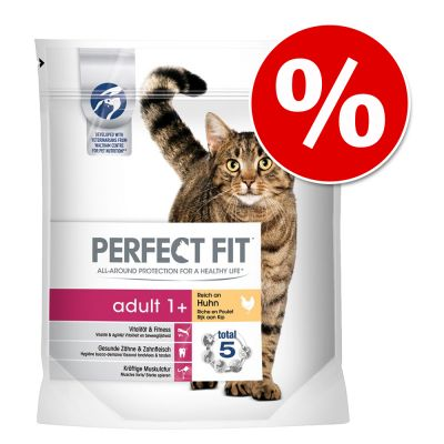 Perfect Fit -kuivaruoka -15 % alennuksella! - Perfect Fit Active 1+ Rich in Beef (1,4 kg)