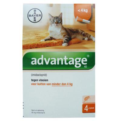2 x 4 Pipetten Advantage® 40 voor katten van minder dan 4 kg - Dubbelpak