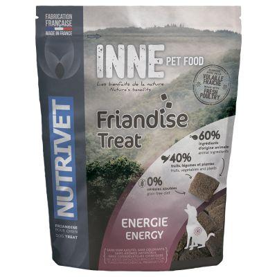 nutrivet-inne-snack-pro-psy-dog-energy-250-g