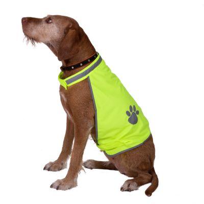 Safety Dog -huomioliivi - M-koko: selänpituus 32 cm
