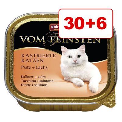 Animonda vom Feinsten kissanruoka 36 x 100 g: 30 + 6 kaupan päälle! – Adult, siipikarja & pasta