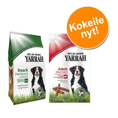 Sekoituspaketti: kokeile 2 x Yarrah Bio -koiranherkkuja - 750 g keksit + 6 x 33 g purutikut