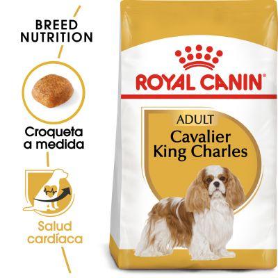 Royal Canin Cavalier King Charles Adult - 7,5 kg