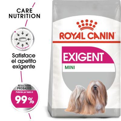 Royal Canin Mini Exigent - Comida húmeda: 24 x 85 g Royal Canin Exigent
