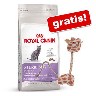 10 kg Royal Canin + Lilla Giraff kattleksak på köpet! – Exigent 35/30 – Savour Sensation