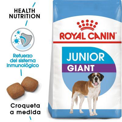 Royal Canin Junior Giant  - 2 x 15 kg - Pack Ahorro