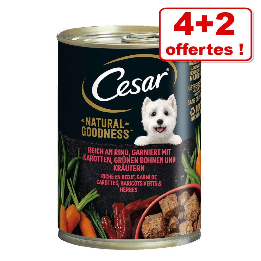 6x400g bœuf Natural Goodness Cesar nourriture humide pour chien