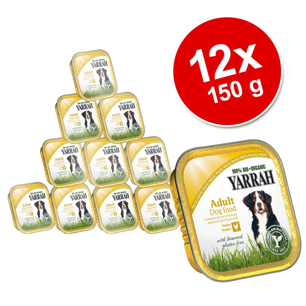 Korzystny pakiet Yarrah B