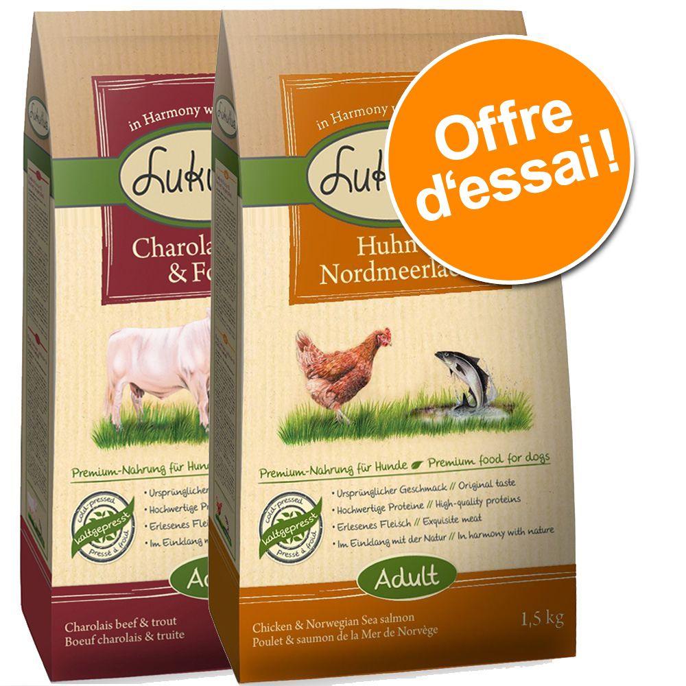 Lot mixte de croquettes Lukullus Adult 2/3 x 1,5 kg pour chien - bœuf Charolais, truite + canard de Barbarie, agneau (2 x 1,5 kg)