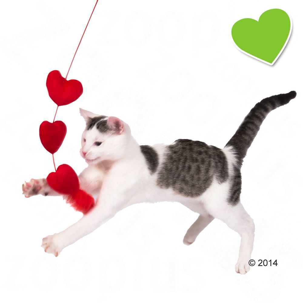 zoolove Katzenangel Herzen - 1 Stück