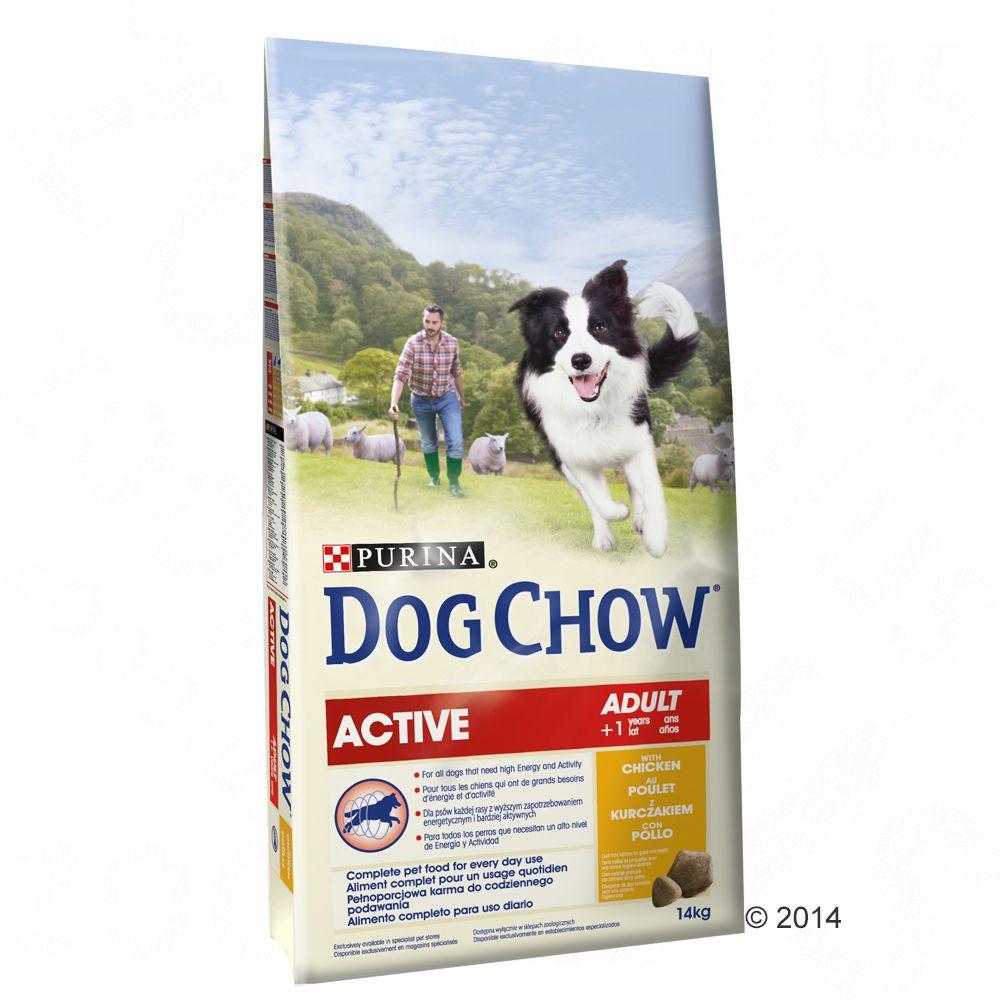 Chien Croquettes Dog Chow Besoins spécifiques