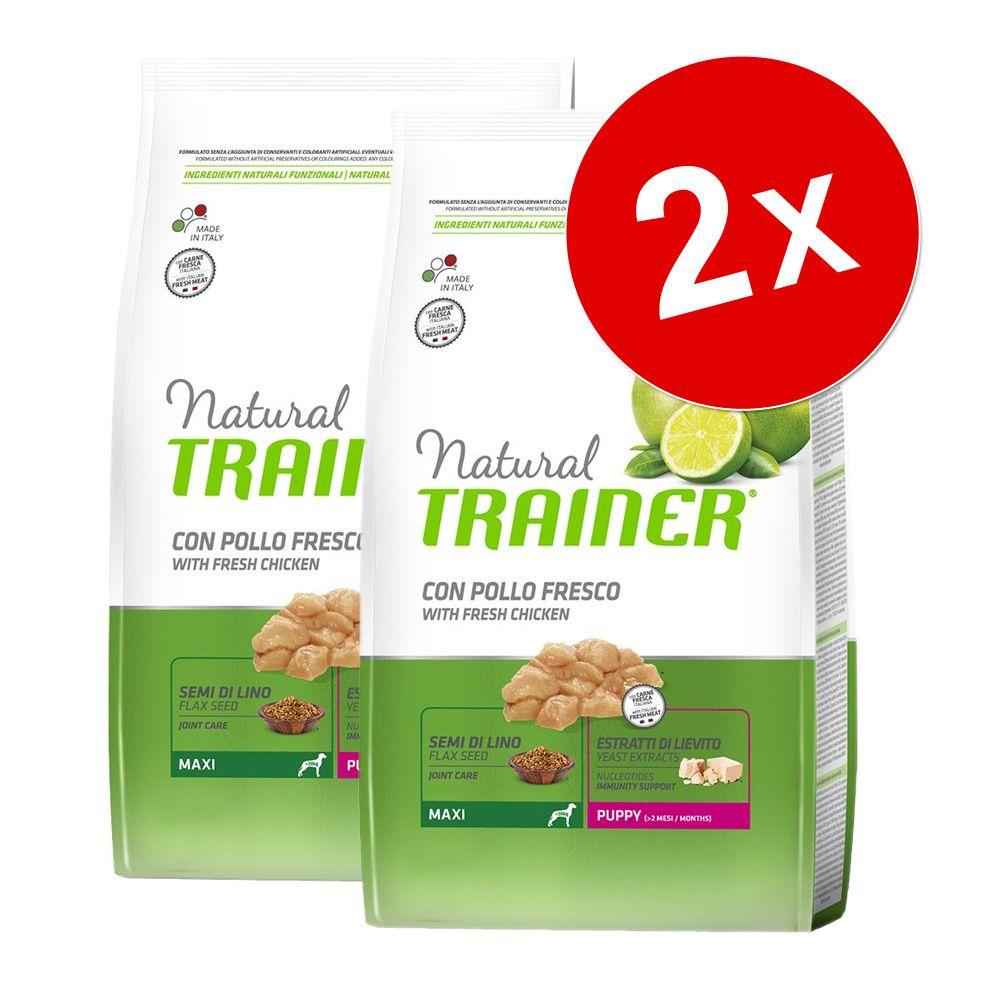 Chien Croquettes Nova Foods Trainer Natural Lots économiques