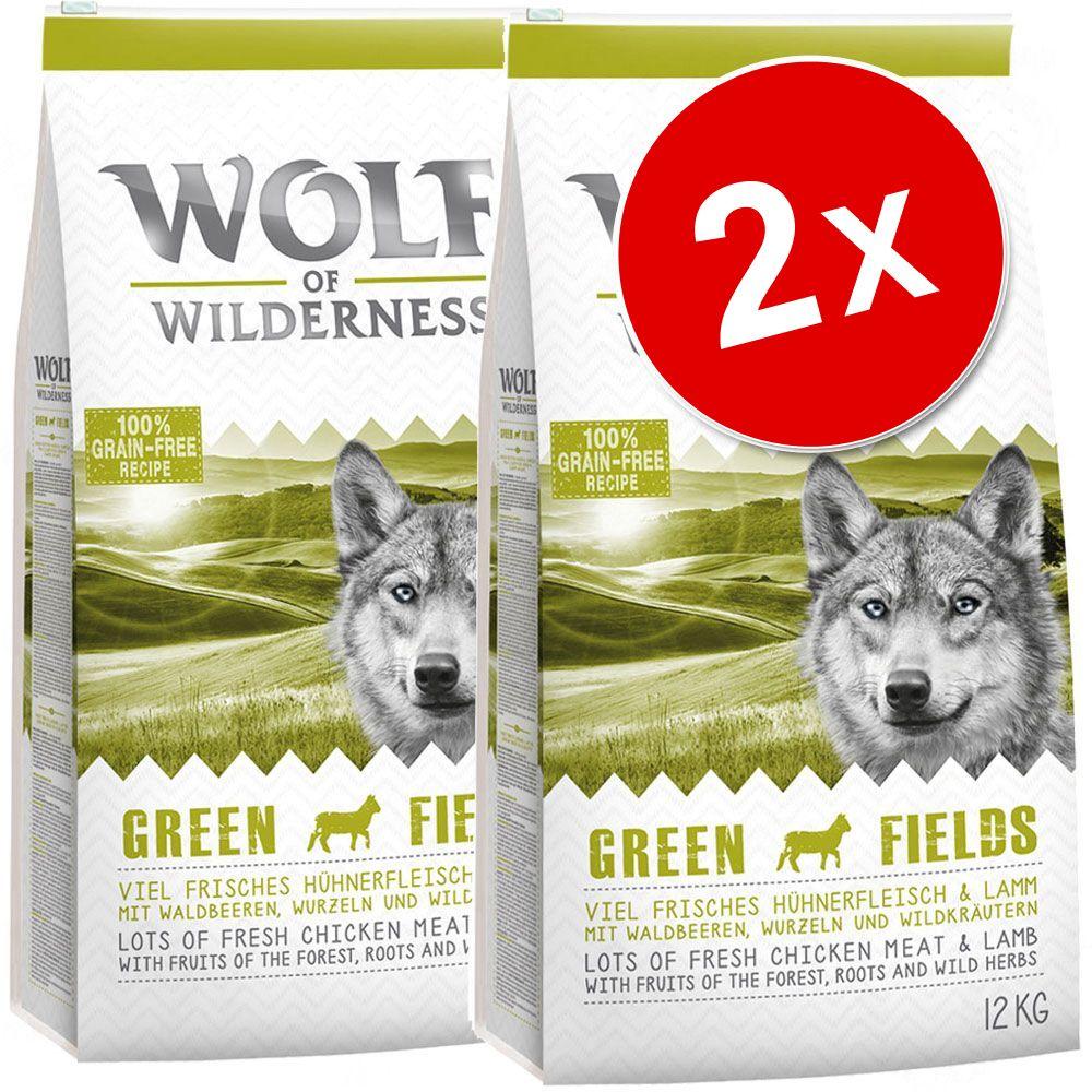 Chien Croquettes ★ Wolf of Wilderness Lots économiques croquettes