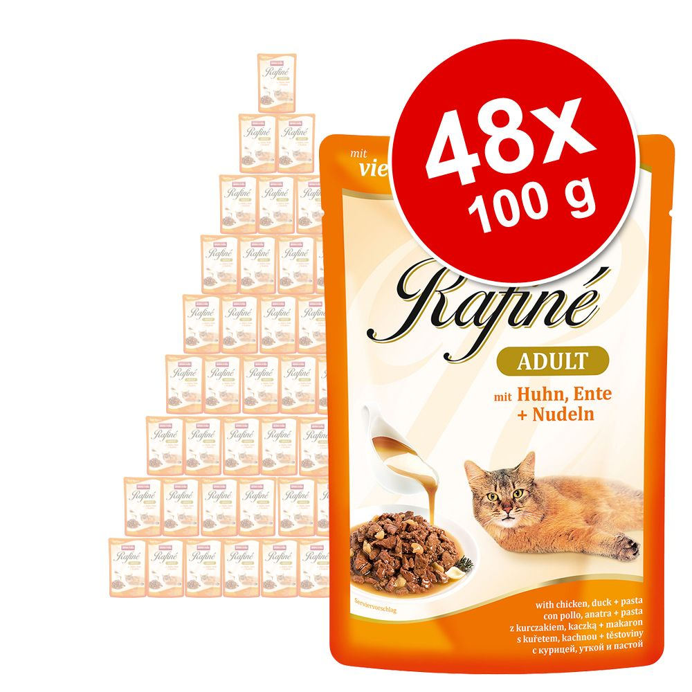 Ekonomipack: Animonda Rafiné 48 x 100 g Delikat mångfald i sås (4 sorter)