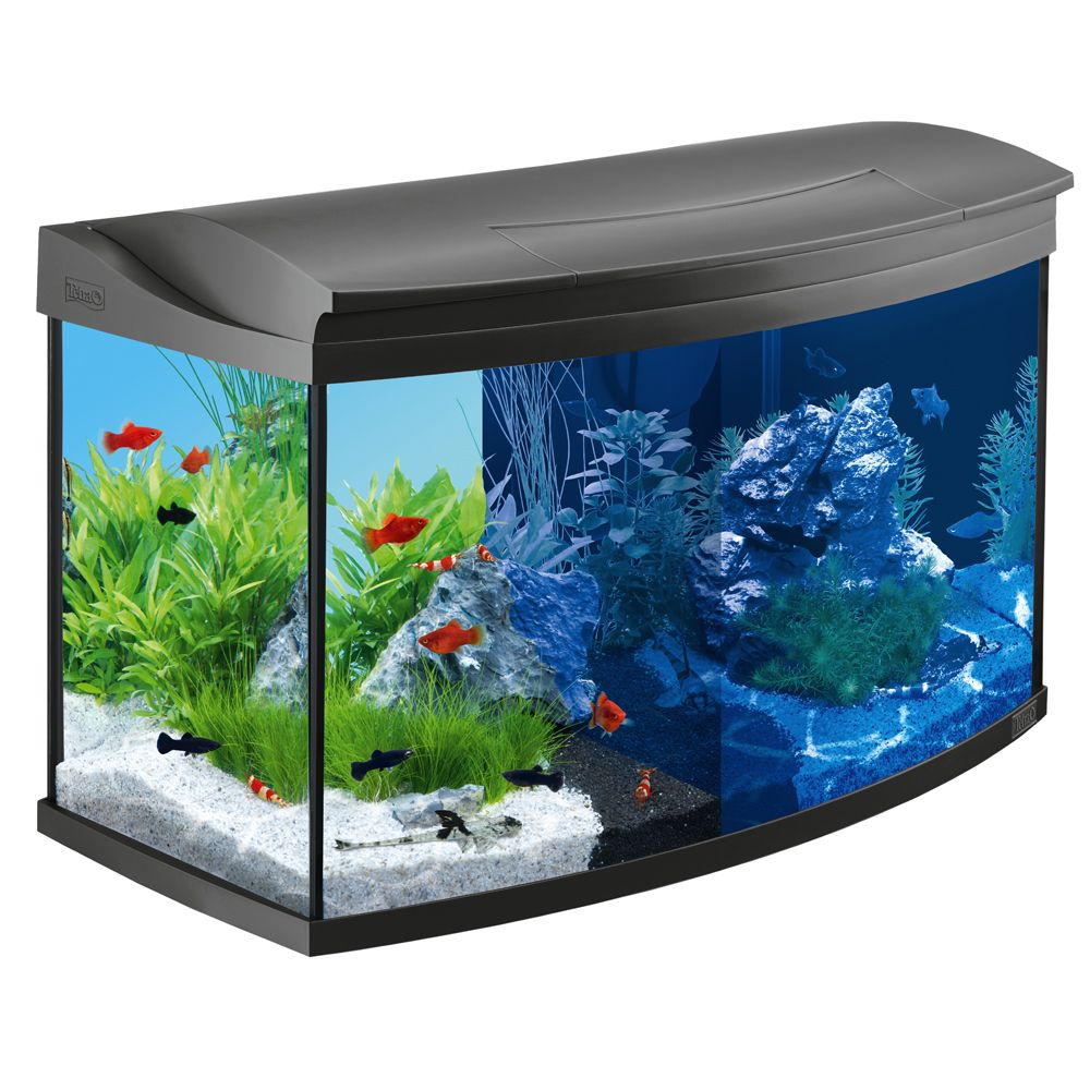 Foto Set Acquario Tetra AquaArt Evolution Line LED 100 l - L 77 x P 38 x H 48,2 cm 60 cm