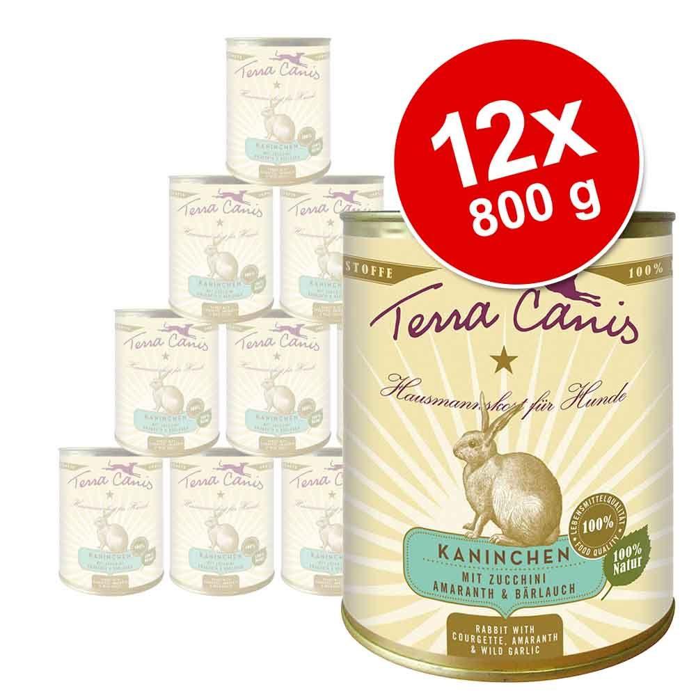 Terra Canis, 12 x 800 g - Bawół z prosem, pomidorami i papają