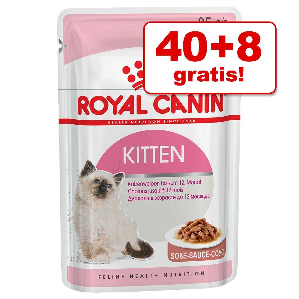 40 + 8 gratis! Royal Canin mokra karma dla kota, 48 x 85 g - Ultra Light w galarecie