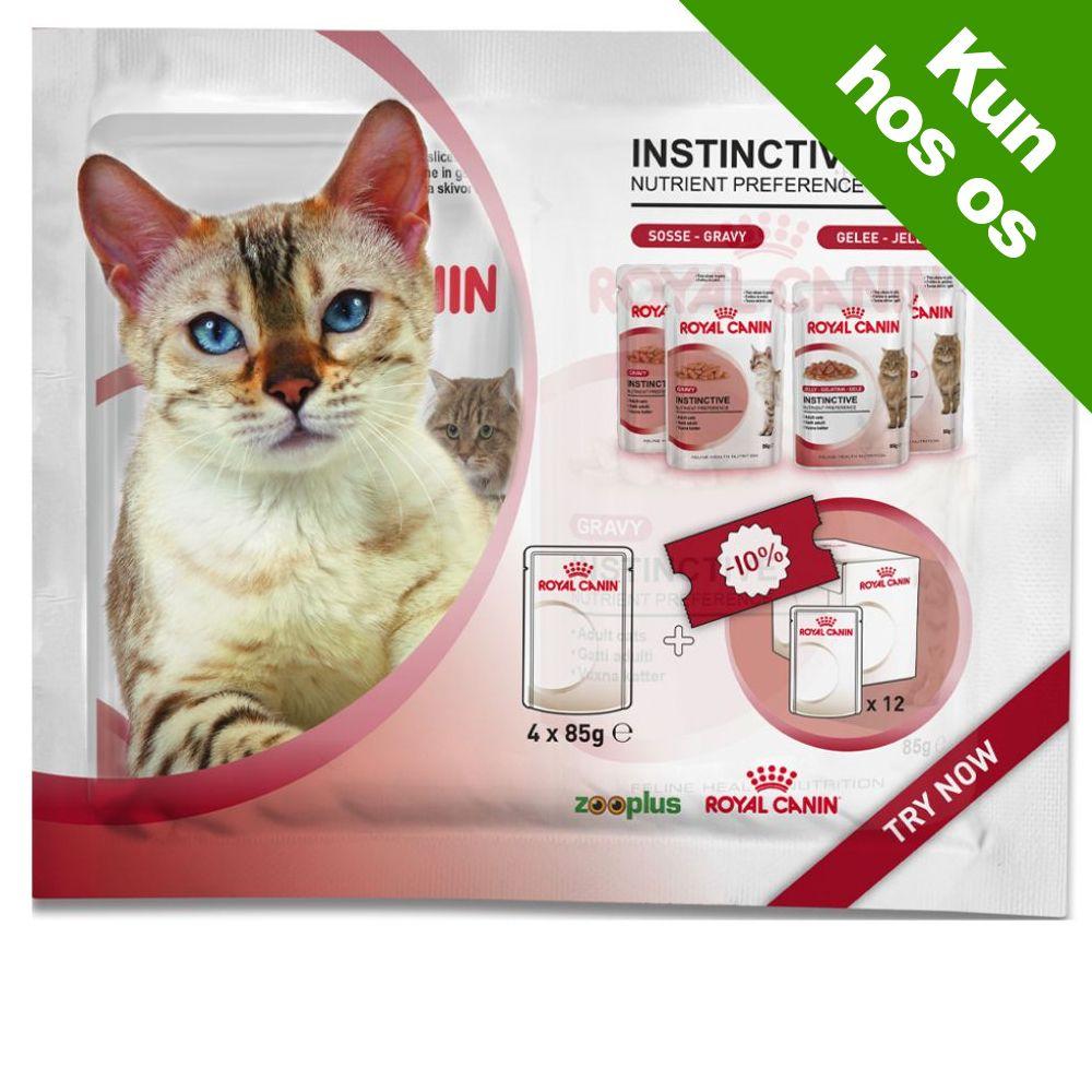 Prøvepakke: 4 x 85 g Royal Canin - 2 x Sterilised i sauce & 2 x Sterilised i gelé