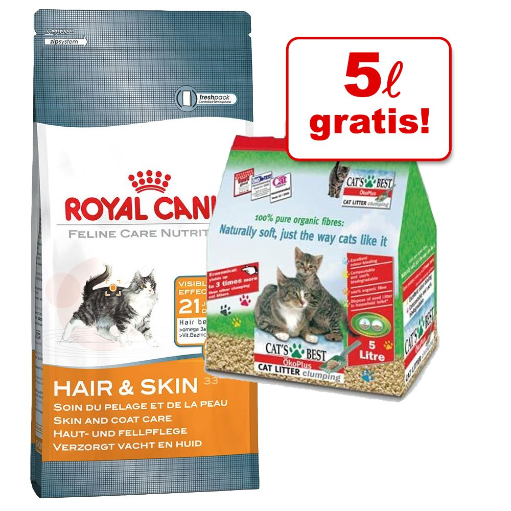 royal canin adult british shorthair 10 kg preisvergleich katzenfutter g nstig kaufen bei. Black Bedroom Furniture Sets. Home Design Ideas