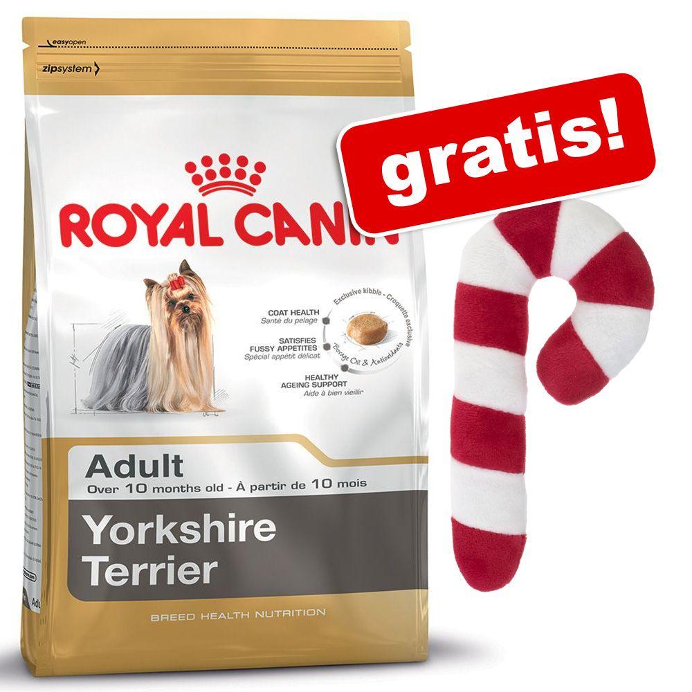 12 kg / 2 x 7,5 kg Royal Canin Breed + Pluszowa laska cukrowa, zabawka dla psa gratis! - Rottweiler Junior, 12 kg