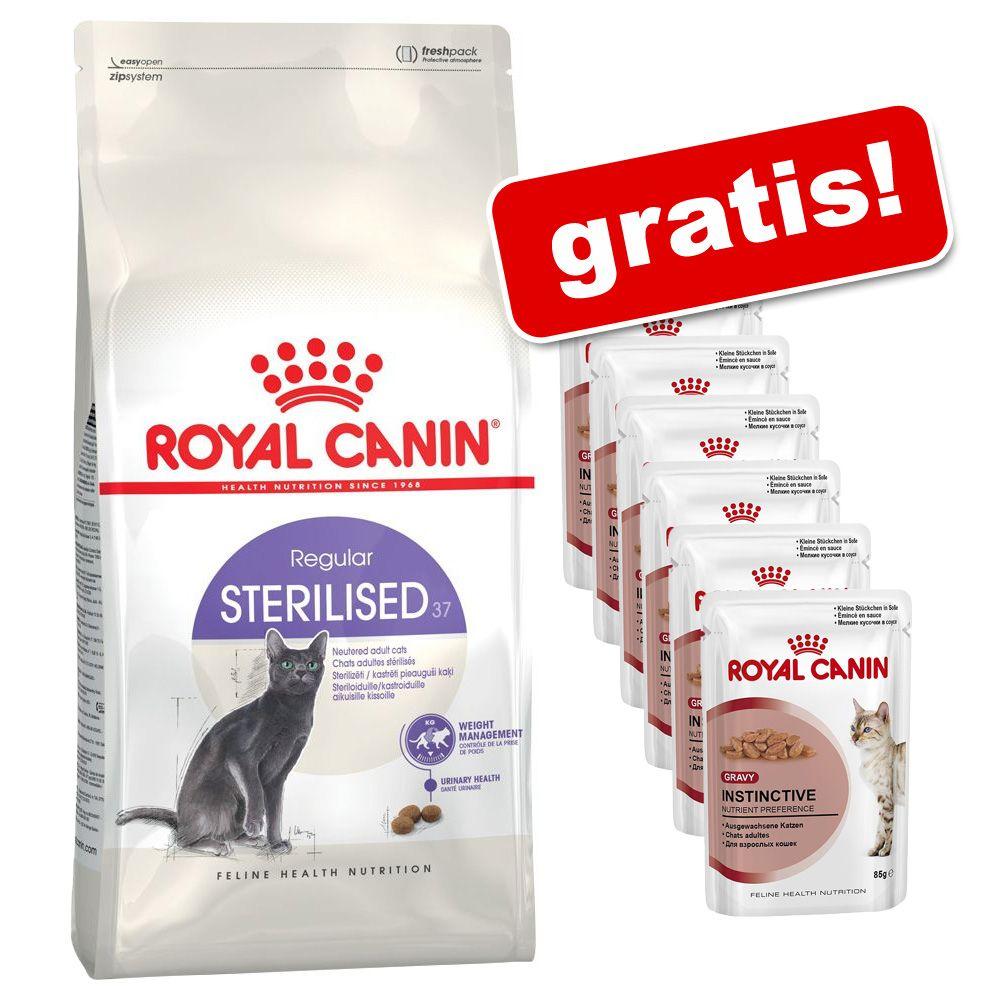 3,5 / 4 kg Royal Canin + 6 x 85 g gratis! - Exigent 35/30 - specjalna struktura, 4 kg + Instinctive w sosie