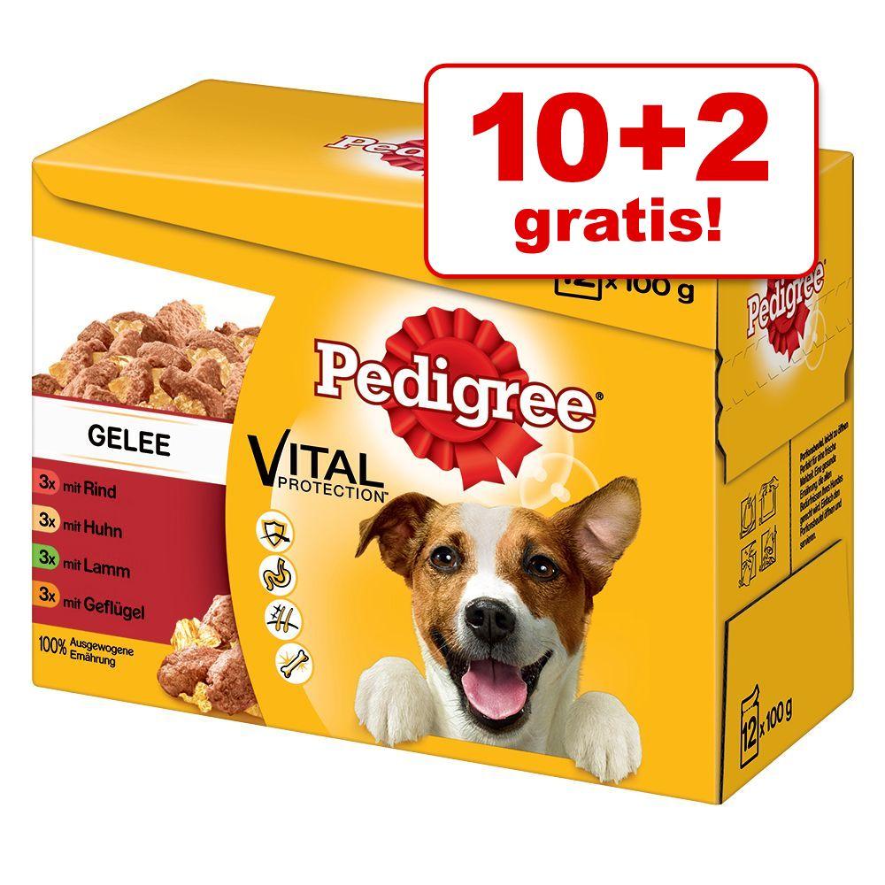 10 + 2 gratis! Pakiet Pedigree Saszetki, 12 x 100 g - w sosie