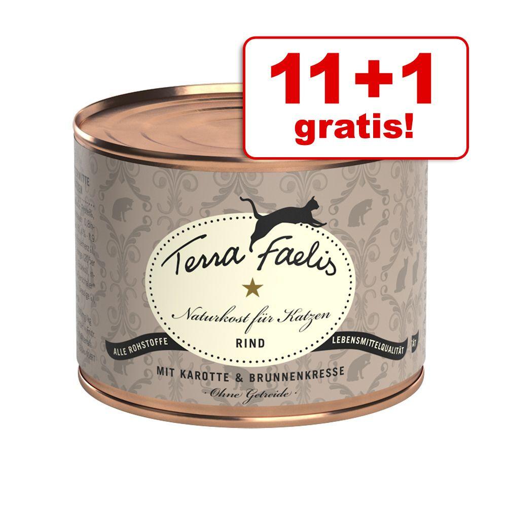 11 + 1 gratis! Terra Fael