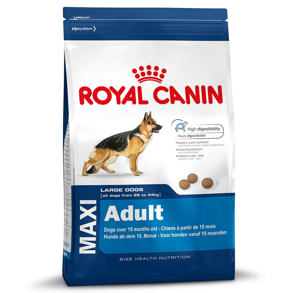 Large Bags Royal Canin Size + 7 Pedigree Dentastix Free!* - Maxi Junior Active (15kg) + Large Sticks